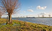Wet Floodplains And A River In The Netherlands