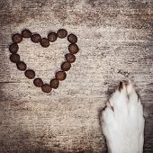 Square, Dog´s Paw And Dried Heart-shaped Kibble On Wooden Table, Nutrition And Love For The Dog poster
