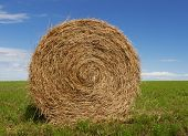 stock photo of hay bale  - hay bale - JPG