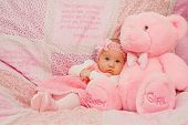 Baby Girl On Pink Blanket