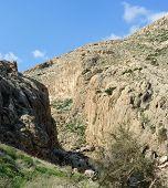 Desert mountain valley of Nachal Prat creek in spring