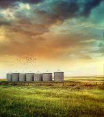 stock photo of silos  - Prairie grain silos in late summer - JPG
