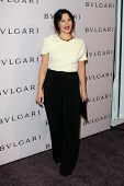 LOS ANGELES - FEB 19:  Drew Barrymore arrives at the BVLGARI Celebrates Elizabeth Taylor's Jewelry C