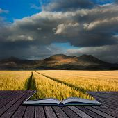 Beautiful Landscpae Of Corn Field Leading To Mountain Range With Dramatic Sky In Pages Of Book Creat