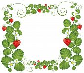 Strawberry Floral Frame