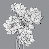Floral background illustration on gray background