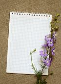 Delphinium On A Notebook