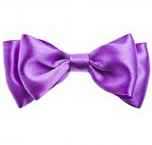 lilac ribbon bow tie isolated on white background