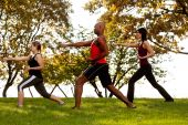 foto of shotokan  - A group of people practicing martial arts in the park - JPG