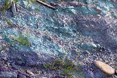 Cambrian Clay
