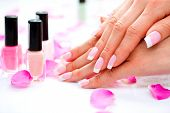 Manicure and Hands Spa. Beautiful Woman hands closeup. Manicured nails and Soft skin. Beauty hands with rose flower petals. Beauty treatment. Beautiful womans nails with beautiful french manicure  poster