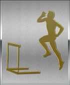 Gold On Silver Hurdles Sport Emblem