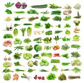 stock photo of pepper  - Cilantro red cabbage zucchini eggplant bell peppers kaffir lime leaves pepper cucumber mushrooms bamboo shoots bean sprouts kale cauliflower cucumbers morning glory leaves garlic broccoli celery squash beans okra ginger sweet potato sweet bell peppers cel - JPG