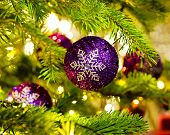 foto of weihnacht  - Bauble Ornament in a real Christmas tree in bright color - JPG