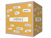 Evidence 3D Cube Corkboard Word Concept