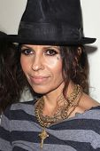 WEST HOLLYWOOD - MAR 15: Linda Perry at An Evening with Women kick-off concert presented by the L.A.