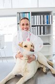 Portrait of female veterinarian with dog wearing medical collar in clinic