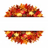 Banner with autumn leaves. Vector eps-10.