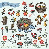 Doodle hedgehog,berries,mushrooms,wood,flowers