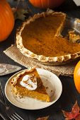picture of pumpkin pie  - Homemade Pumpkin Pie for Thanksgiving Ready to Eat - JPG