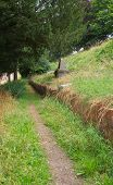 Public Path Cuts Through An Unused Cemetery