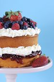 Fresh Whipped Cream And Berries Layer Sponge Cake On Pink Cake Stand Against Pale Blue And White Bac