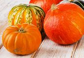 Colorful Pumpkins On A Wooden Background