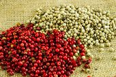 Pink and White Peppercorns