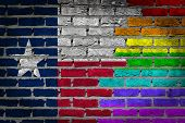 Dark Brick Wall - Lgbt Rights - Texas