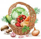 Basket Different Vegetables