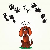 picture of dog footprint  - Cute Dog - JPG