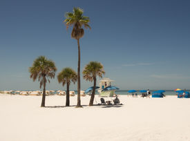 image of cabana  - palm trees and cabanas on white sandy beach in Clearwater Florida - JPG