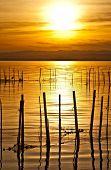 amanecer en el mar de los pescadores