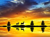 silhouettes of deer walking along the lake shore at sunrise