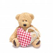 Charming Teddy Bear With Fabric Heart