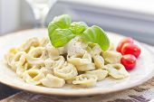 stock photo of basil leaves  - Cheese tortellini in a creamy alfredo sauce garnished with fresh basil leaves - JPG