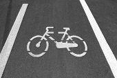 Bike Sign On Asphalt