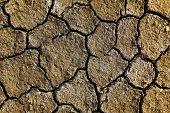 Dry Arid Soil
