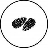 almonds symbol