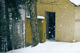 stock photo of outhouse  - Yellow abandoned outhouse on a snowy day with background forest - JPG