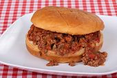 Salsa Sloppy Joe