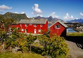 foto of lofoten  - Fishing cottages by the sea - JPG