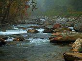 Foogy River