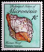 A 1-cent Stamp Printed In The Federated States Of Micronesia