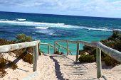 Rottnest island en Australia