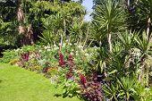 In the beautiful Aue Gardens