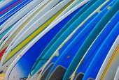 Row Of Brightly Colored Surf Boards