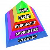 A pyramid illustrating the steps of learning a skilled trade, rising from student to apprentice to s