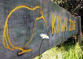 Kiwi Zone Sign