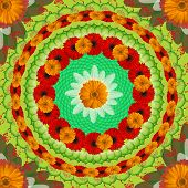 Floral Mandala Drawing Sacred Circle